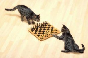 catchess